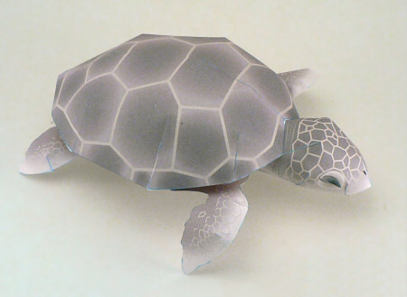 seaturtle_hitachi