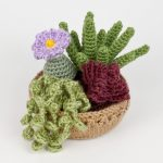 Succulent Collection 3 crochet pattern
