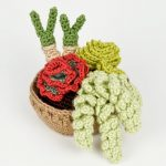 Succulent Collection 4 crochet pattern