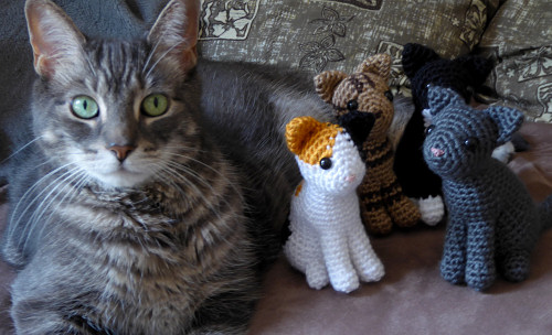Small cat with joined legs | Free amigurumi and crochet patterns ... | 304x500