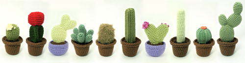 10 cactus crochet patterns by PlanetJune (Cactus Collections 1 & 2, Heart Cactus Collection)