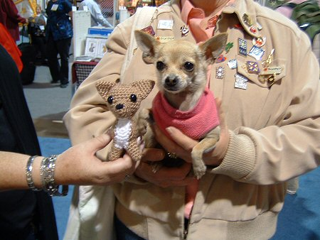 crocheted and live chihuahuas
