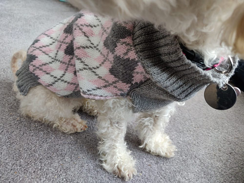 fixing an unravelling dog sweater with crochet