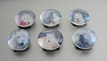 doggy marble magnets