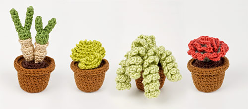 Succulent Collection 4 crochet pattern by PlanetJune