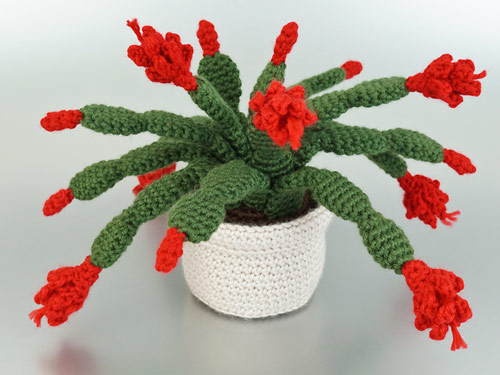 Christmas Cactus crochet pattern by PlanetJune