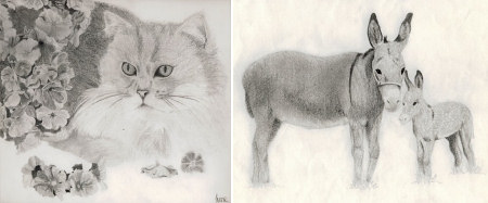 pencil sketches by June Gilbank