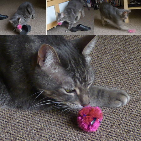 crinkle ball cat toy tutorial by planetjune