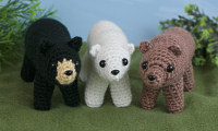 black, brown and polar bears multipack