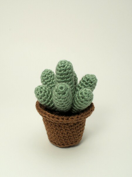 Cactus Collection 1: FOUR realistic crochet patterns - Click Image to Close