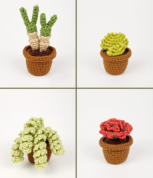 Succulent Collection 4: FOUR realistic crochet patterns - Click Image to Close